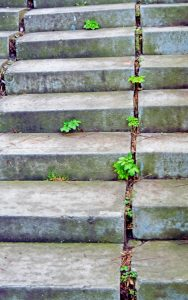 Concrete step repair is such a minor step in maintenance